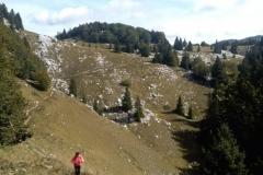 Velebit-rujan-24-620x465-1