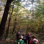 Jesen-na-Dilju-26.10.2019.-013-150x150